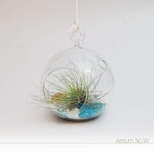Aerium No'Ar - Azul Pequeno
