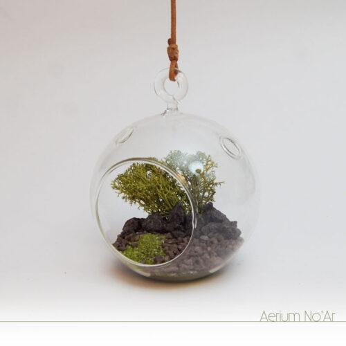 Aerium No'Ar - Verde Pequeno - Sem planta