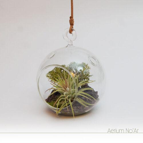 Aerium Redondo Verde No'Ar - Verde Pequeno