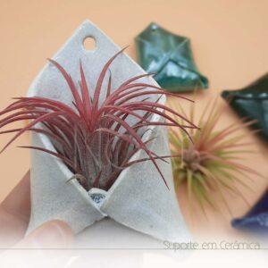 Envelope em cerâmica pequeno com planta