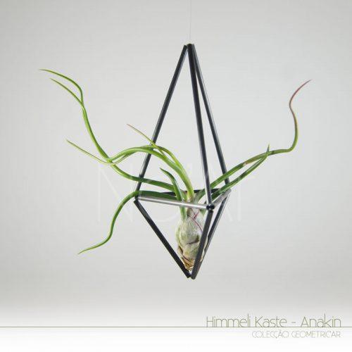 Himmeli Kaste Anakin - Pequeno - PlantasNoAr
