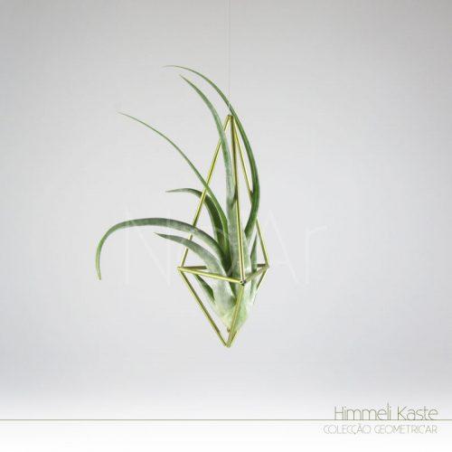 Himmeli Kaste c/ planta - PlantasNoAr
