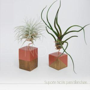 Suporte de mesa para tillandsia - Plantas No'Ar
