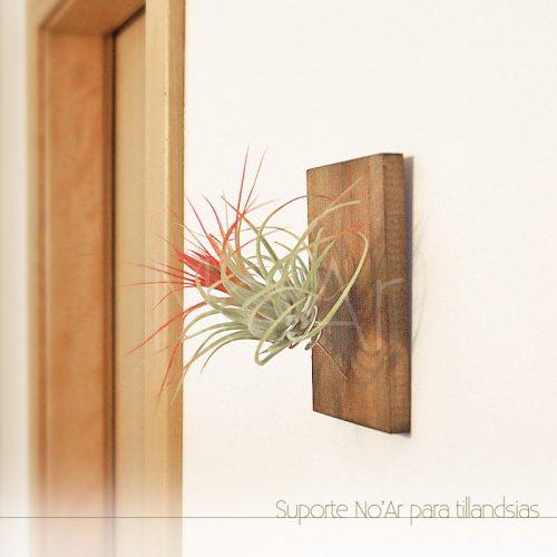 Suporte de parede - Plantas No'Ar
