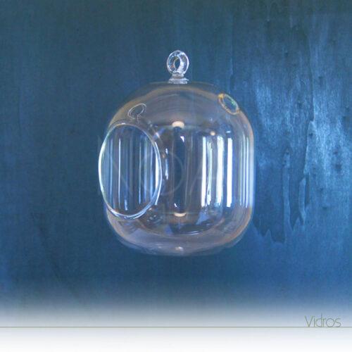 Suporte para tillandsia - Aerium em vidro - Tamanho Médio
